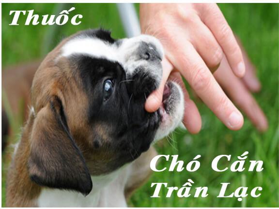 Thuốc Điều trị Chó Cắn Trần Lạc